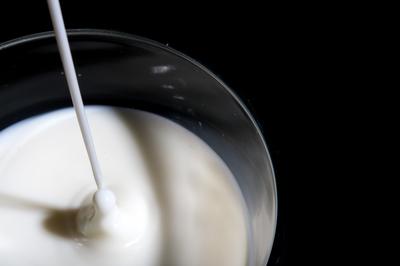 Landwirte: Die Milchkrise ist noch nicht ausgestanden
