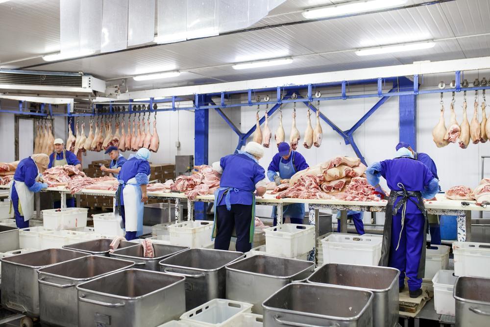 DGB: Unterbringung der Schlachthofarbeiter muss besser werden