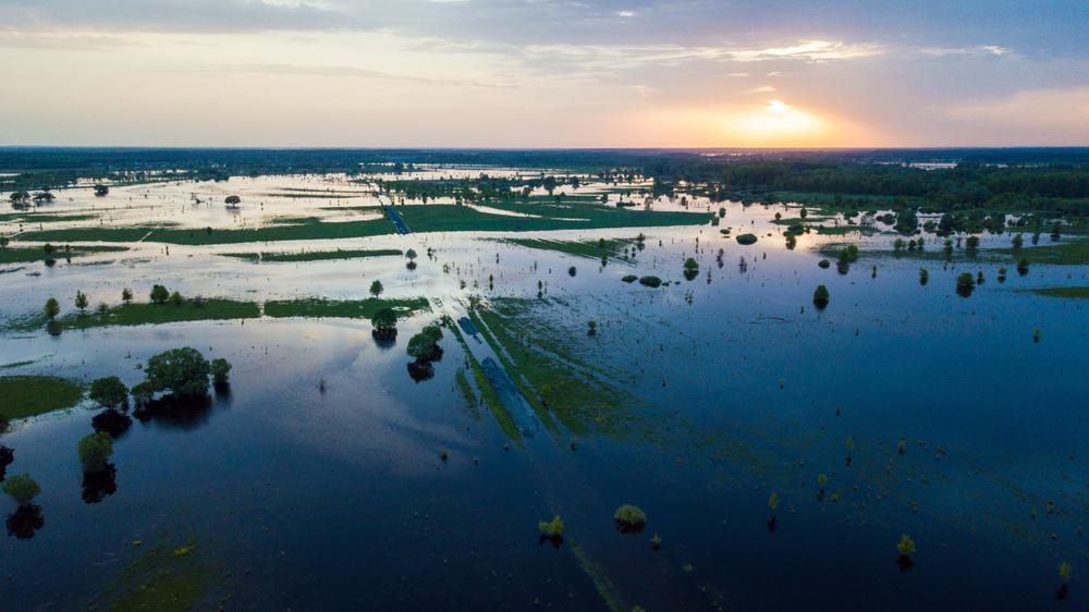 Nach Flutkatastrophe: Bauernverband für Soforthilfen an Landwirte
