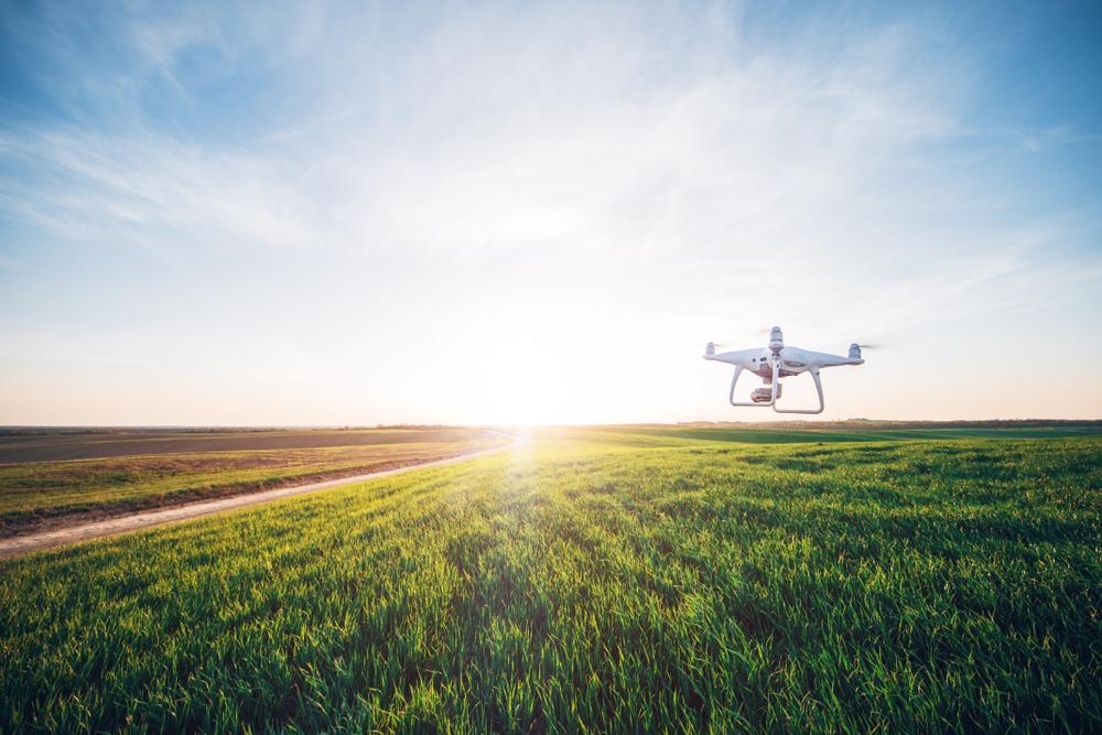 Bund unterstützt Kitz-Retter mit Geld für Drohnen