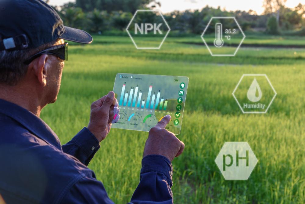 Agrar- und Umweltverbände: Umbau der Landwirtschaft umsetzen