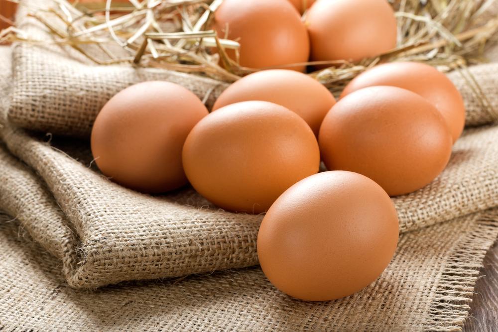 Bio oder Bodenhaltung - Klöckner will Ei-Herkunft auf Lebensmitteln