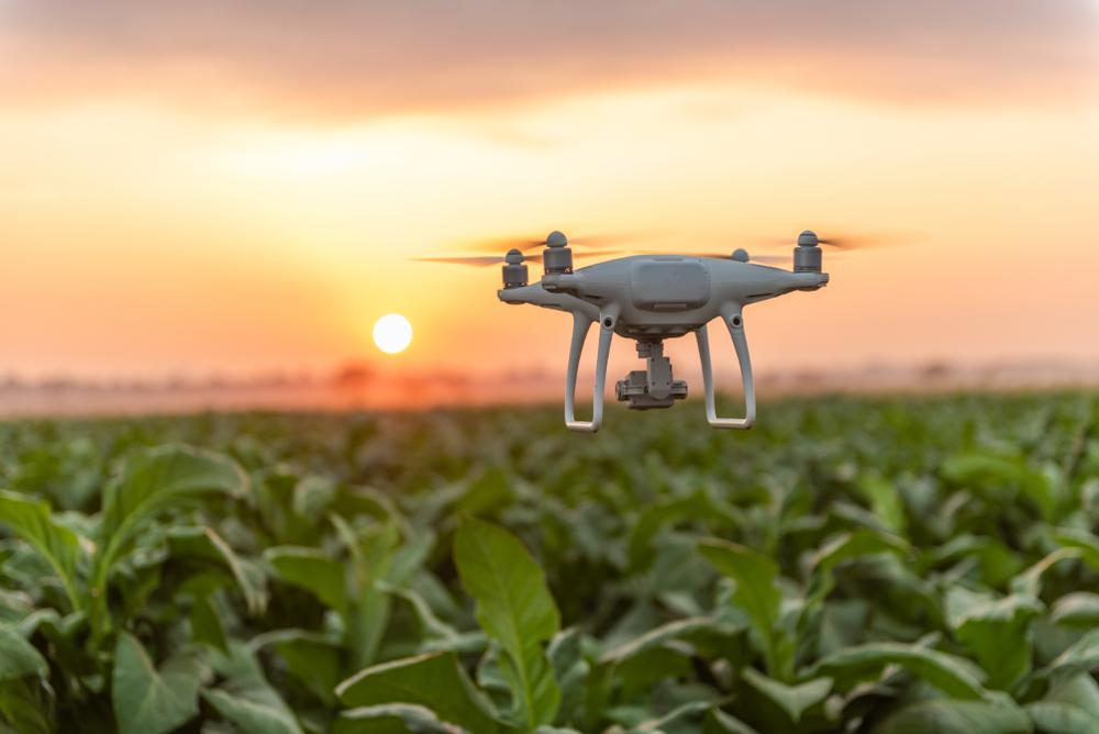 Jäger und Naturschützer im Südwesten setzen verstärkt auf Drohnen