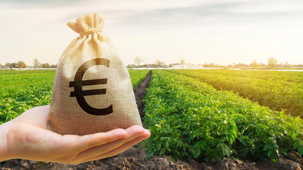 «Weckruf» für die Welt: UN-Bericht fordert Reform der Agrar-Hilfen