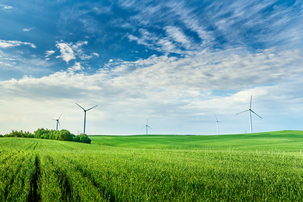Regierungschefin Schwesig: Bauern sind Partner bei Klimaschutz