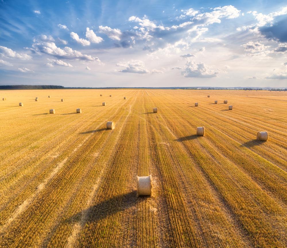 Schulze: Einigung zur Verteilung der Agrargelder in Deutschland steht