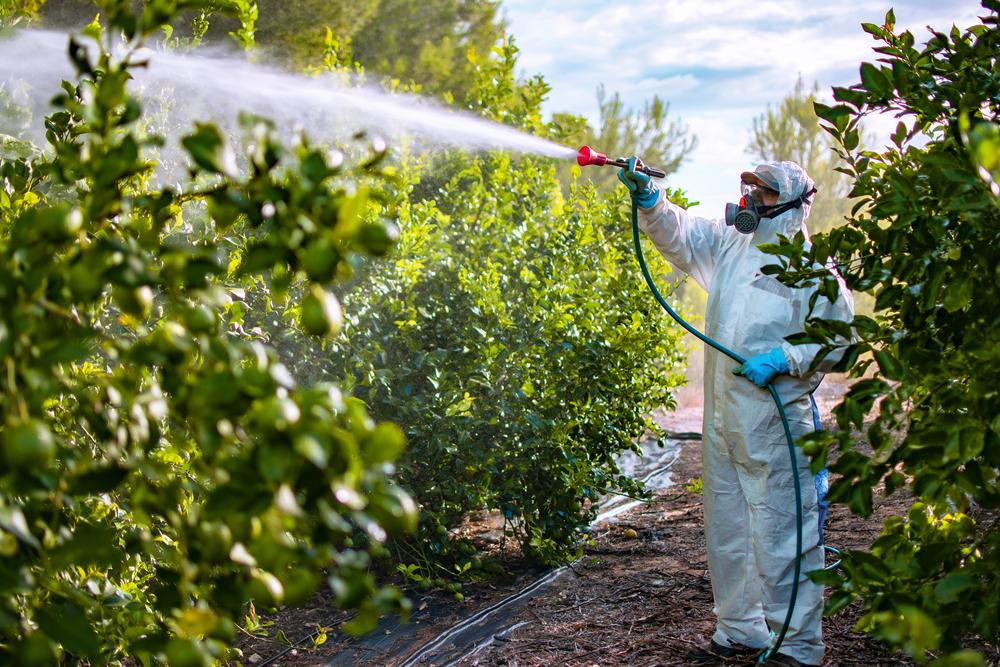 Deutsche Umwelthilfe fordert in Koalitionsverhandlungen Abkehr von Pestiziden statt