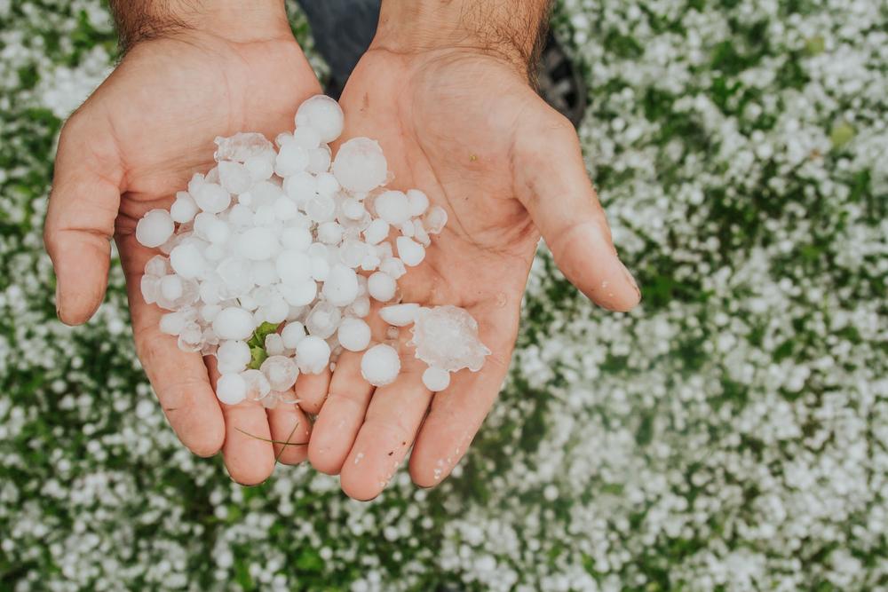Millionenschäden nach Hagelunwetter in der Schweiz