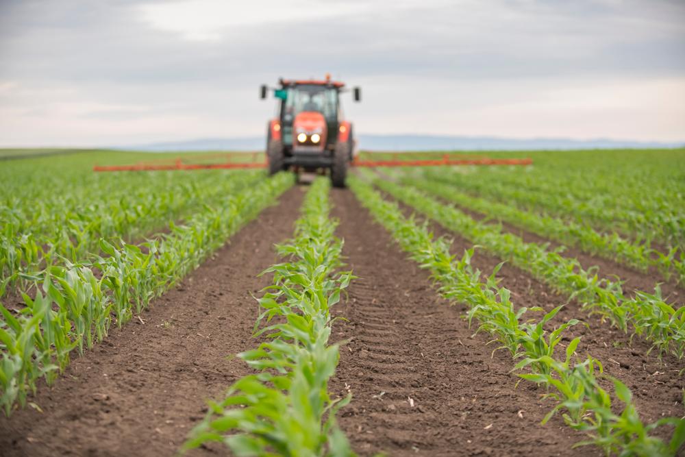 Bauernverband fürchtet finanzielle Verluste durch Düngeverordnung