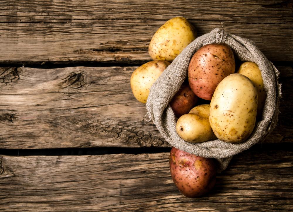 Deutsche Kartoffelernte diesmal wohl schwächer als im Vorjahr