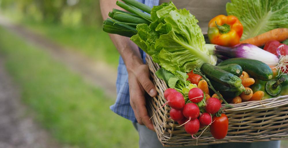 Bio-Lebensmittel im Wandel von der Randerscheinung zum Massenprodukt