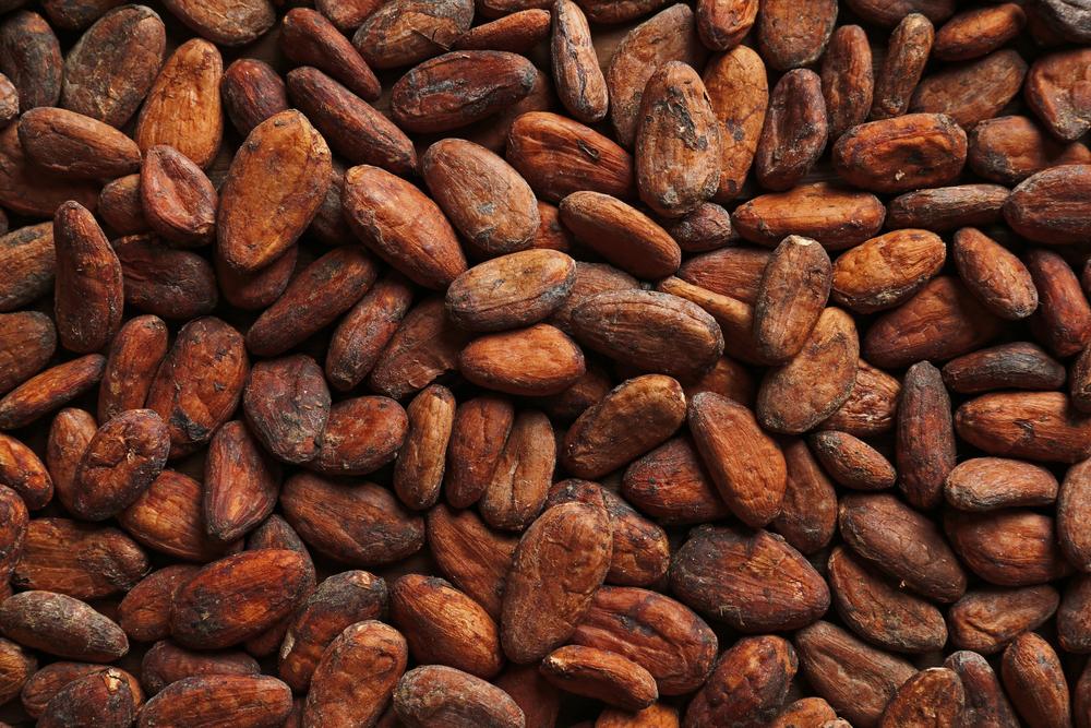 Kakao-Barometer 2020: Nur struktureller Wandel in der globalen Kakaolieferkette kann Armut beseitigen