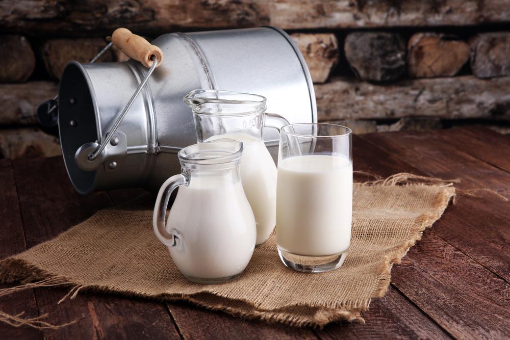 Bauern demonstrieren für höhere Milchpreise